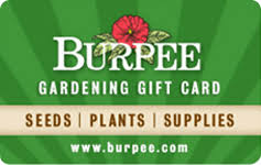Burpee gift card balance checker
